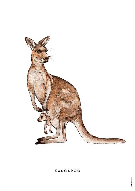 Poster Kangoeroe A4