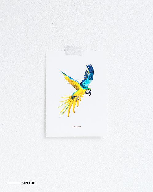 Postcard Papegaai