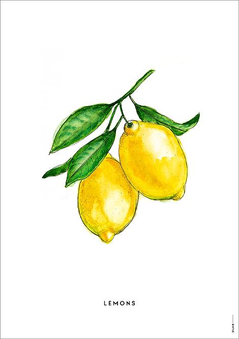 Poster Lemons A4
