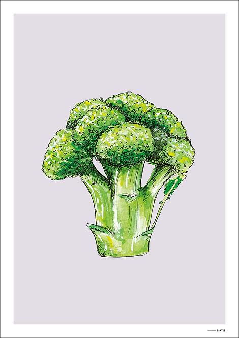 Poster Food Broccoli 15x20