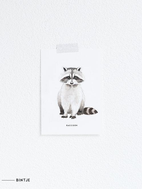 Postcard Wasbeer