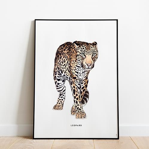 Poster Luipaard 50x70