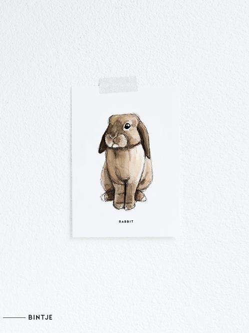Postcard Konijn