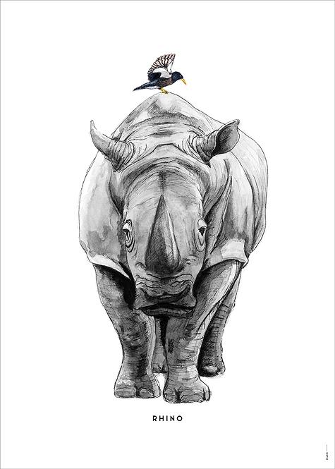 Poster Neushoorn