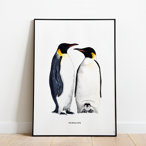 Poster Pinguins 50x70