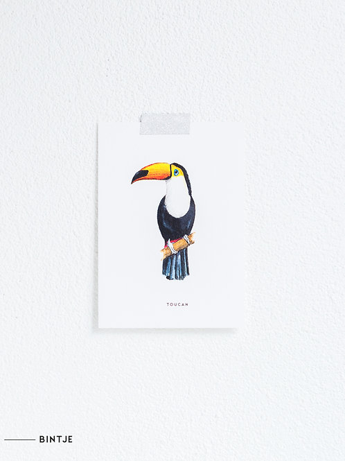 Postcard Toekan