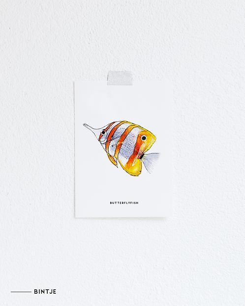 Postcard Vlindervis