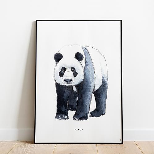 Poster Panda 50x70