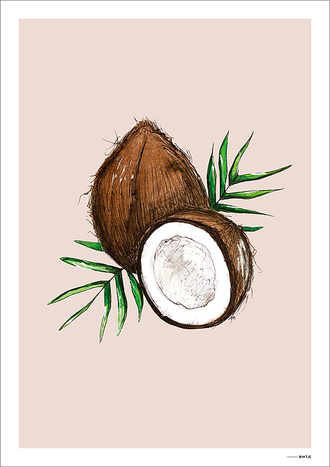 Poster Food Cocosnoot 15x20