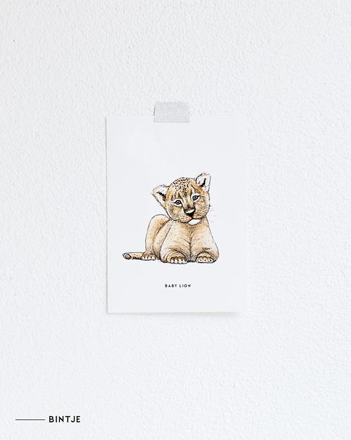 Postcard Baby leeuwtje
