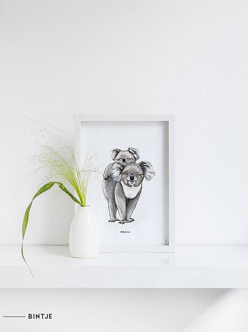 Poster Koala's A4