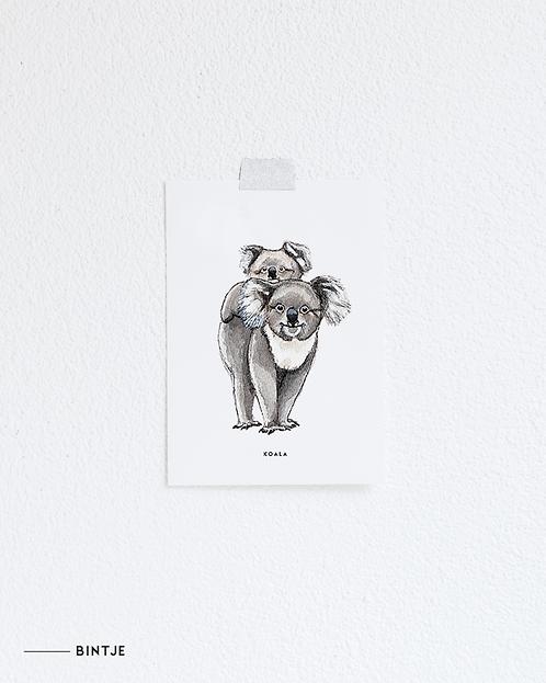 Postcard Koala's