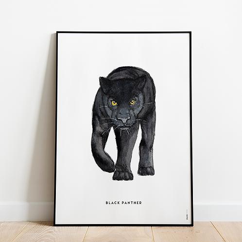 Poster Zwarte panter 50x70