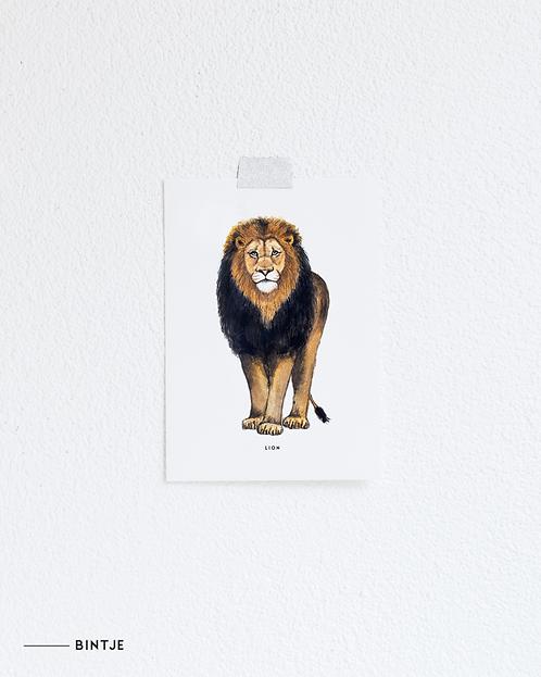 Postcard Leeuw