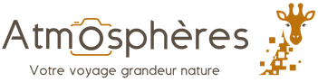 Logo + texte Atmosphères marron.png
