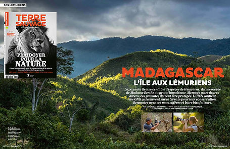 Madagascar-TerreSauvage.jpg