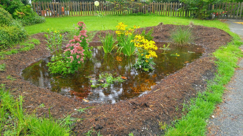 05_LID_StormwaterBMP_Rain_Garden_3_20011
