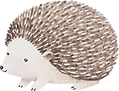 Drawing%20of%20Hedgehog_edited.png