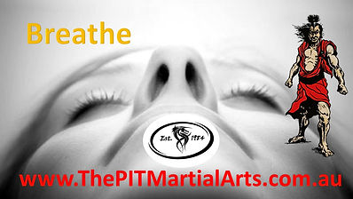 Tai Chi PDS Martial Arts.jpg