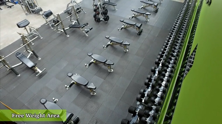 Revitalise Gym - Free Weights Area.jpg