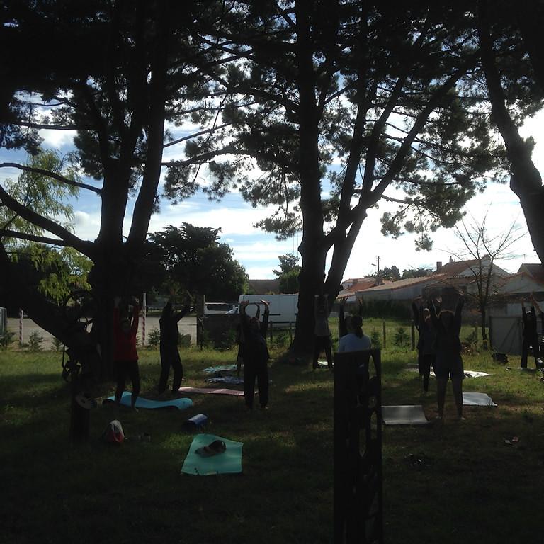 tous les mercredis stretching postural en plein air avec Sarah (4)