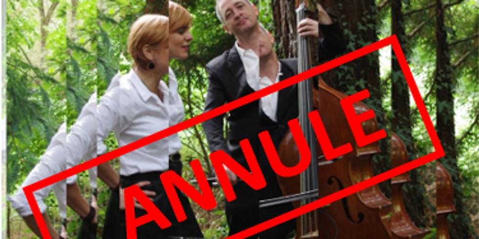 Soirée des adhérents : Concert et appel à Bénévoles pour le programme de l'été