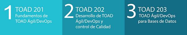 TODOS TOAD 202.png