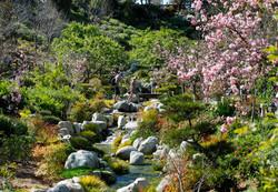 Japanese Friendship Garden San Diego