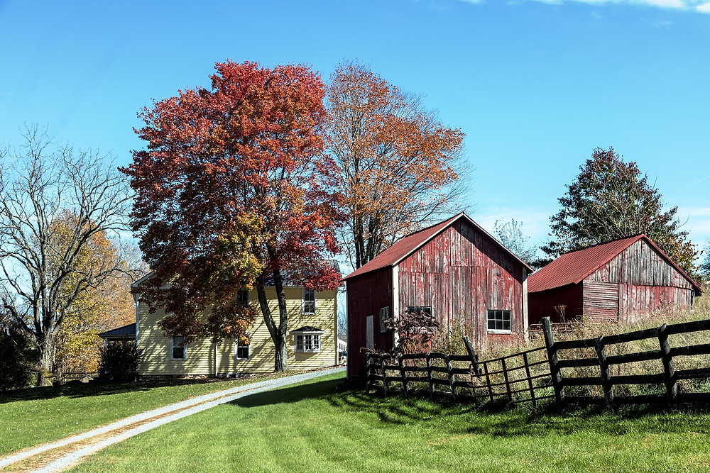 Country Farm in Wainfleet
