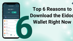 Top 6 Reasons to Download the Eidoo Wallet Right Now