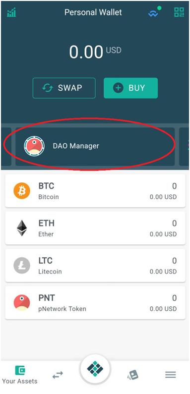 Eidoo wallet DAO manager