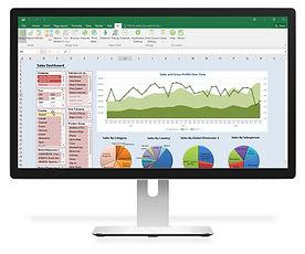 Jet Reports business intelligence BI solution for Microsoft Dynamics NAV in Cambodia