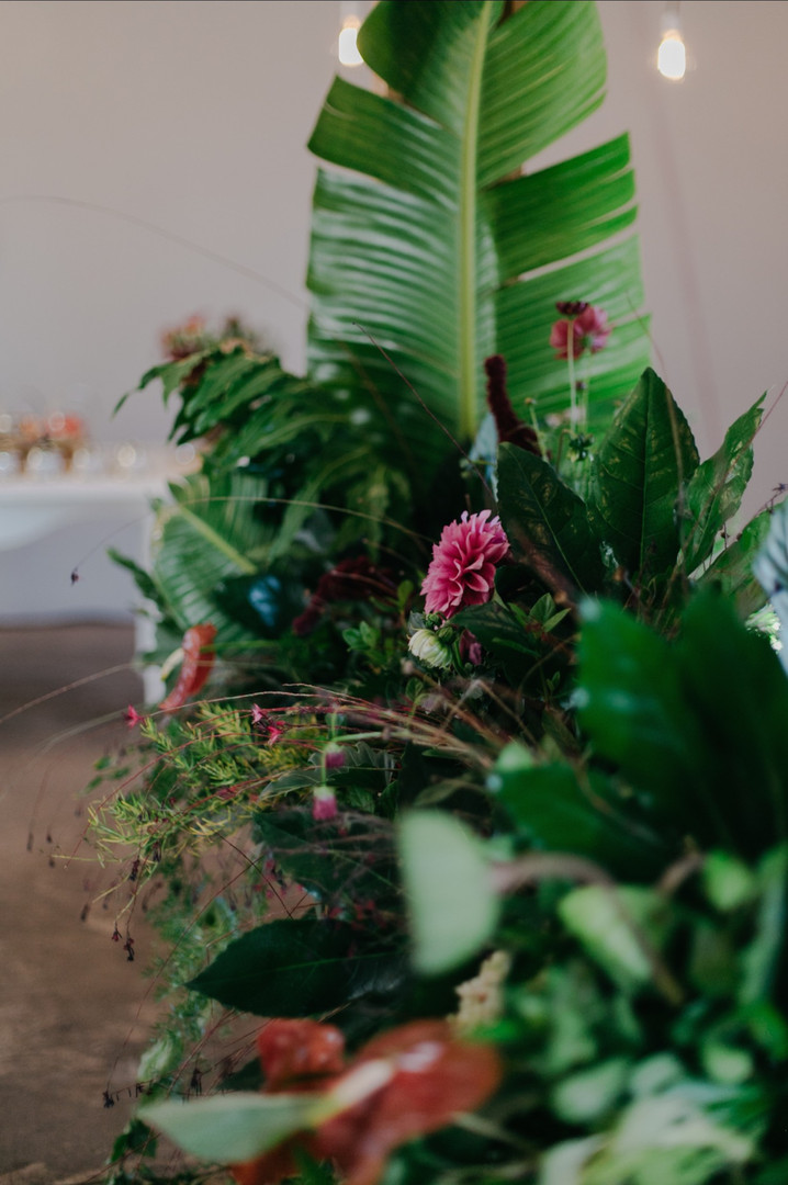 The Grand Botanist | Basque Imagery