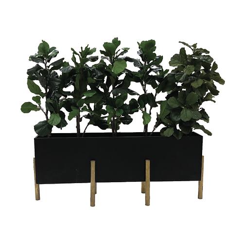 Planter Box - Black & Gold