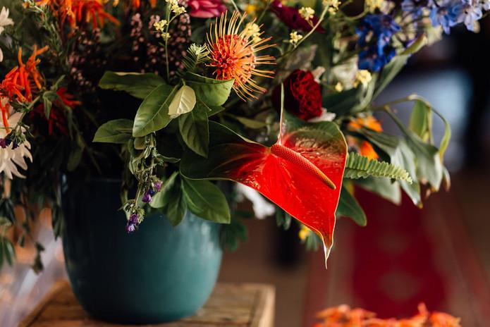 The Grand Botanist | Pritti by Migneon Marais