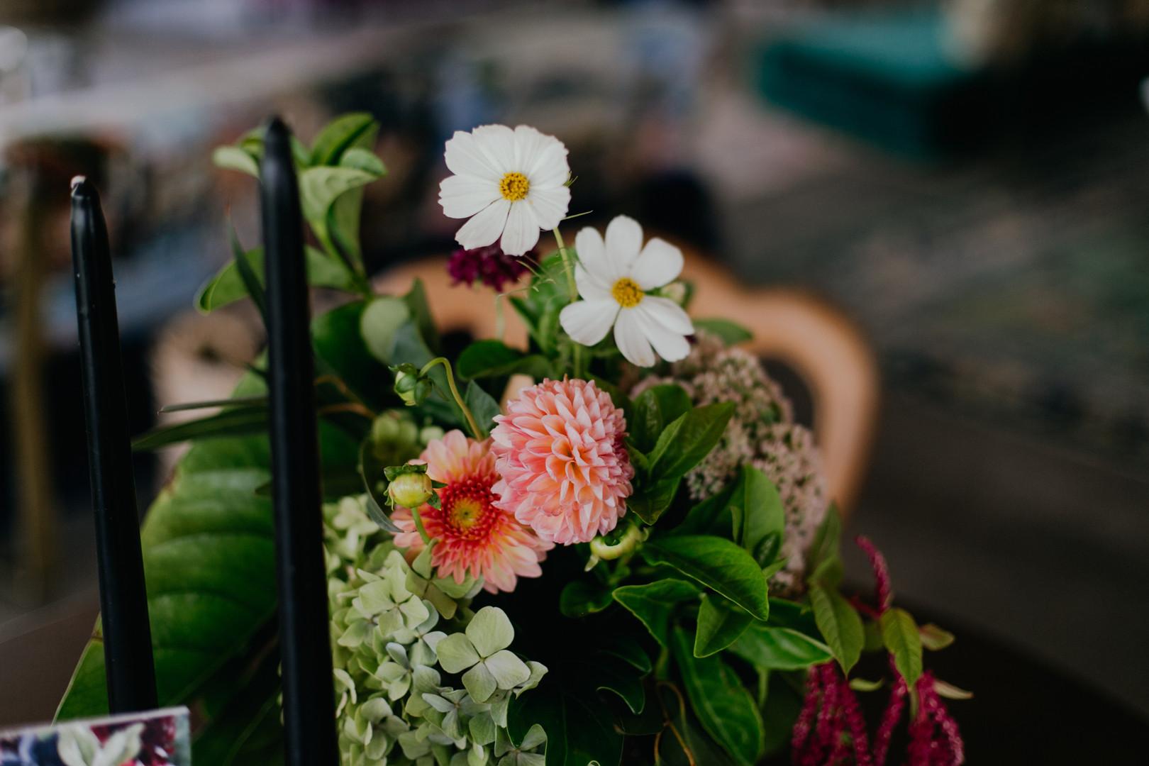 The Grand Botanist | Mick Creative