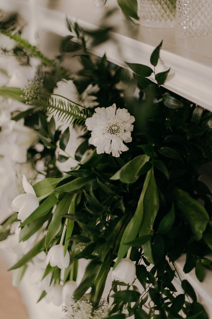 The Grand Botanist | Vivid Blue Studio