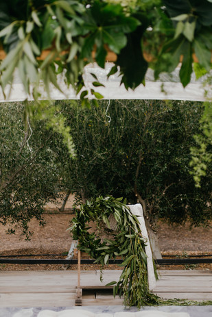 The Grand Botanist | Mick Creative Photography