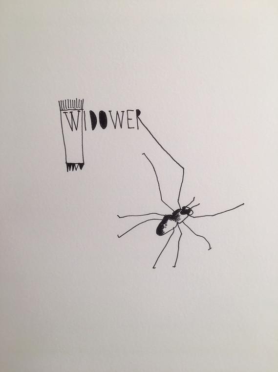 12. Widower (Vedovo), 2019