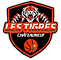 logo tigre de chateauneuf.png