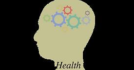 Natural Health and Homeopathy, LLC.png