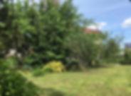 Grundstück_.jpg