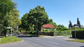 Roelckestraße mit Einfamilienhäusern