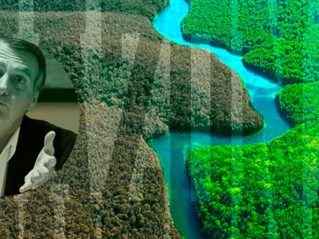 Amazonía en peligro, el efecto Bolsonaro