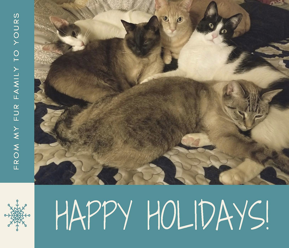 Happy Holidays from The Cat Counselor
