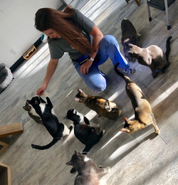 My CatCafe Lounge Students