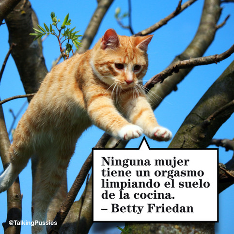 Betty Friedan ESP