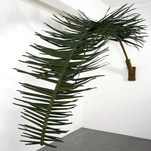 bluecurry(palm).jpg
