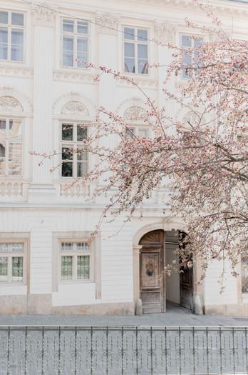 U!Shine Vienna: Mindful Photography