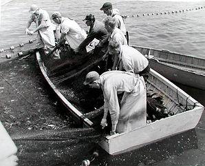 Fisheries_800.jpg